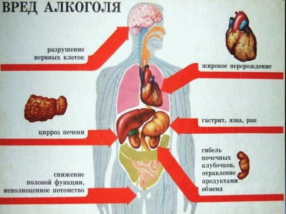 Вред алкоголя и курения